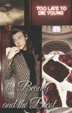 THE BEAUTY AND THE BEAST » narry by narrydabest