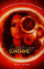 Catching Sunshine by RiriNord