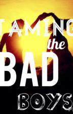 Taming the Bad Boys by vanmccanntrash