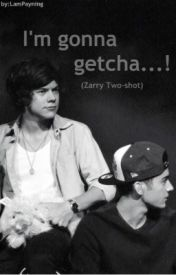 I'm gonna getcha..! (Zarry Stalik Two-shot) *Mature* by LamPayning