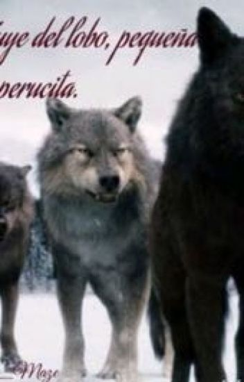 Huye del lobo, pequeña Caperucita.