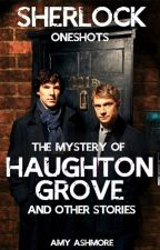 Sherlock and The Mystery of Haughton Grove by simmeringsilver