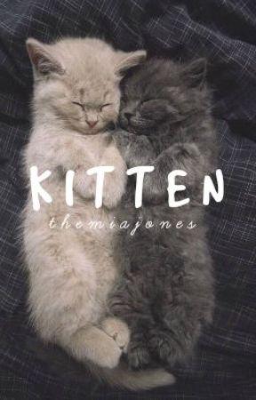Kitten - h.s. AU by themiajones