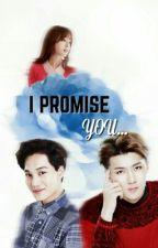 I Promise You by sehuxist