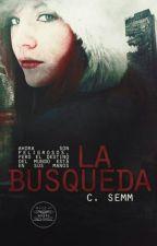 La Búsqueda by C_Semm
