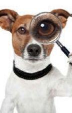 O cachorro detetive by Gigi_Kids