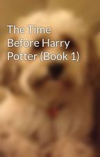 The Time Before Harry Potter (Book 1) by dadssweets