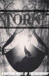 Torn by firesnowdrop