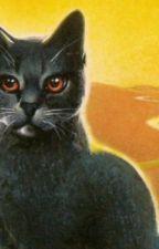 Warrior Cats OC Name Generator by Shellstrike