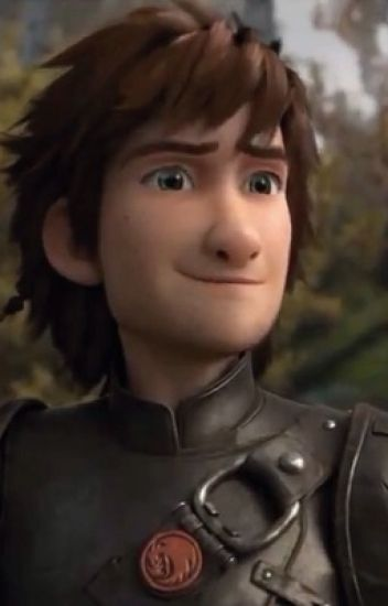 Hiccup x Reader STORY (Older Hiccup <HTTYD2>)