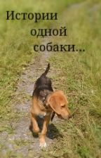 Истории одной собаки. by AppolinariaCat