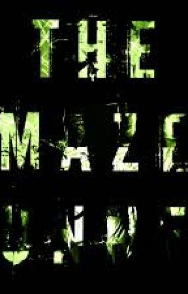 The maze runner  (Newt y tu)