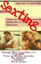 |•Sexting•| (Hot) Liam Payne y Tu. by MarArmmy