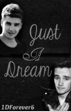 Just a Dream (A Liam Payne Fan fiction) by 1DForever6