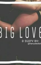 Big Love (Harry Styles) by harryokokstyles