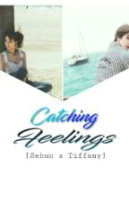 Catching Feelings (HunFany) indonesia ver. by Cinderelliaa