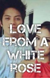 Love from a white rose {kathniel} by flowermarie123