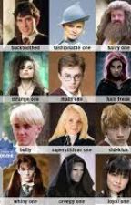Harry Potter Preferences!  by beforehecheats