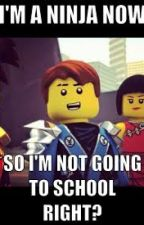 50 Things I'm Not Allowed To Do In Ninjago by The_Humor_Ninja15