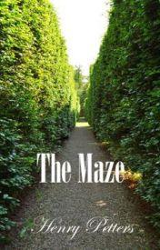 The Maze by Torivor15
