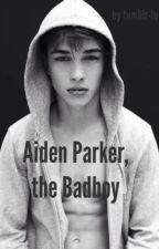 Aiden Parker, the Badboy by tumblr-lu