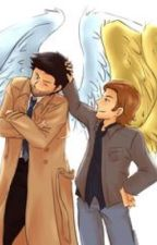Wings Of Guidance (Gabriel and Castiel Fanfiction) by T_pup356