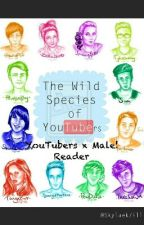 YouTubers x Male! Reader by TransHarleyQuinn
