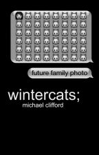 wintercats; m.c by reactionpics