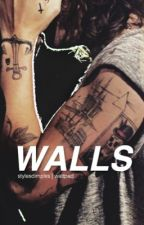 walls | h.s by stylesdimplxs