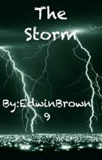 The Storm by EdwinBrown9