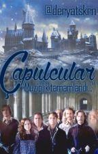 """ÇAPULCULAR"" by deryatskrn"