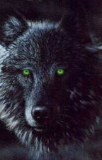 Her Little Wolf (A Camren Story) by lol-ur-not-lauren-j