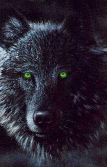 Her Little Wolf (A Camren Story)