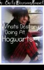 Whats Destery doing at Hogwarts??!! by EmilyMaxwell