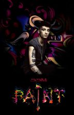 paint (ziam)(persian) by niallssm