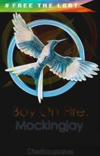 Boy On Fire: Mockingjay (Updated+Complete) by Chaoticcupcakes