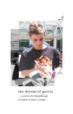 The Dream Of Garrix • Martin Garrix by ValeriiaVch