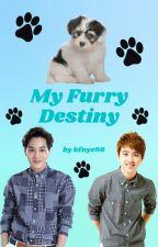 My Furry Destiny (A KaiSoo Fanfic) by kfnye98