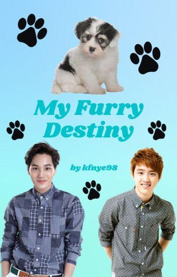 My Furry Destiny (A KaiSoo Fanfic)