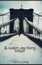 A Modern Day Harry Potter by secret_ninja