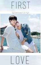 First love // vkook by canyounotcatt