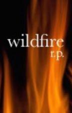 Wildfire by rozetnov