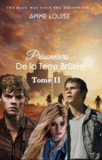 Prisonniers de la Terre Brûlée by AmmeLouise