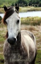 The Little Grey Mare by LeonaSmyth2