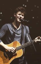 My Brothers' Annoying Friend - A Shawn Mendes Fanfiction by hayzeybaby