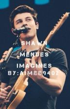 Shawn Mendes Imagines by aimee9402
