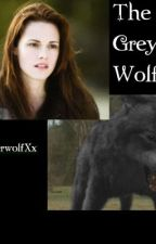 The Grey wolf [Bellice] by xXTimberwolfXx