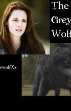 The Grey wolf [Bellice] by xXTimberwolfXx