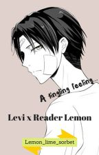 A tingling feeling [Levi x Reader Lemon] by Lemon_lime_sorbet
