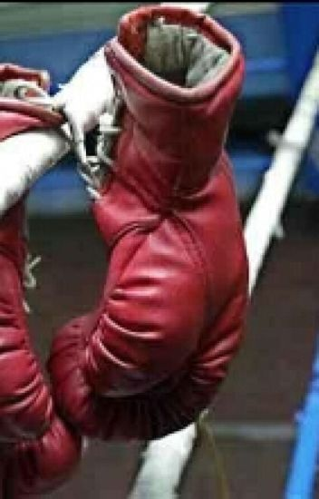 Mi boxeador